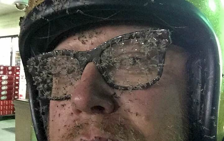 Bugs On Motorcyle Riders Face