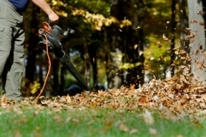 Always wear safety glasses or goggles when using a leaf blower!