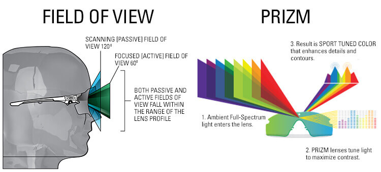 Oakley Prizm Info