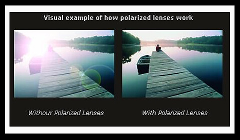 Polarized Lenses Blocking Glare