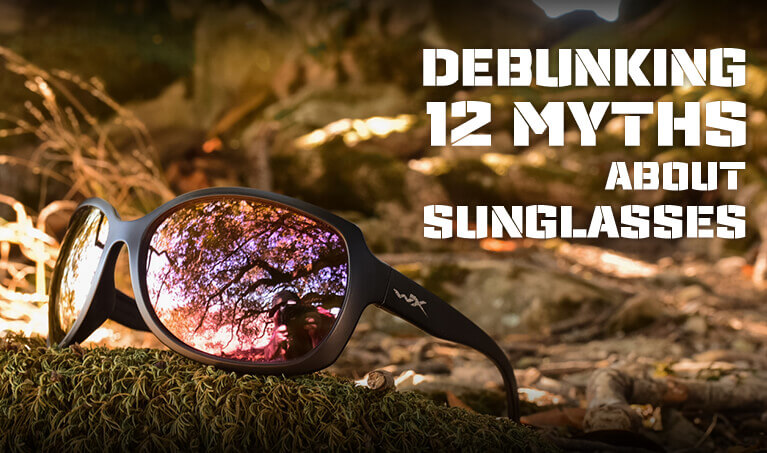 Debunking 12 Myths Featured